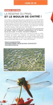 La Réserve du Pinail et le Moulin de Chitré dans le Châtelleraudais de l'été
