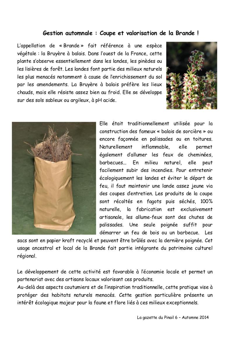 gazette_pinail_n6_p2