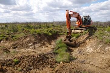 Agrandissement des zones de marnage des zones humides annexes par la création de pentes douces © Kévin Lelarge, 2017