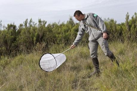 Inventaire naturaliste par l'équipe de la Réserve naturelle du Pinail