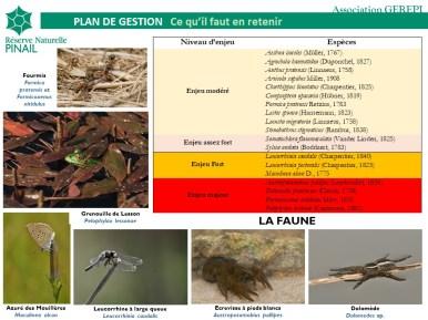 Responsabilités de conservation de la réserve du Pinail pour la faune