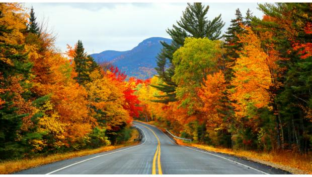 must see fall foliage