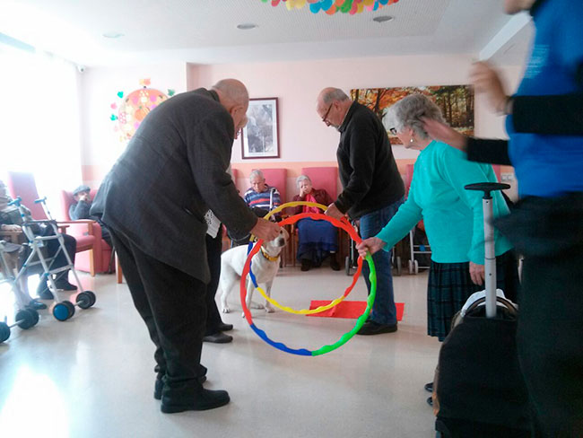 terapia-asistida-con-animales-de-compania-en-residencias-de-ancianos