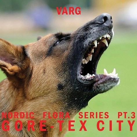 Varg - Nordic Flora Pt. 3: Gore-Tex City