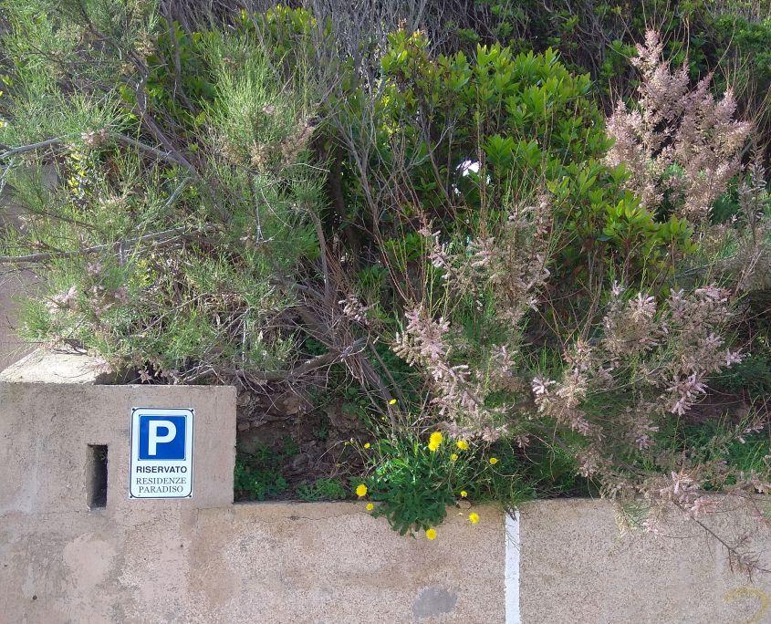 Parcheggio Privato Esterno