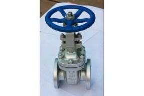 Image result for trim material for cast steel gate valve