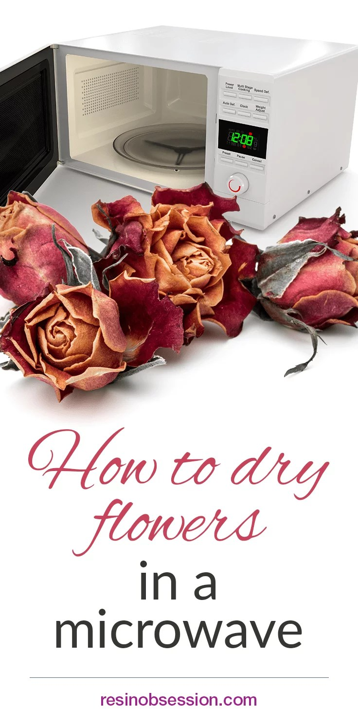 How to dry flowers in the microwave