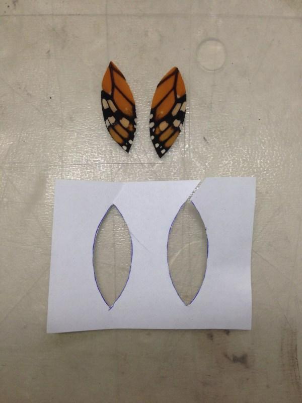 Trimmed butterfly wings