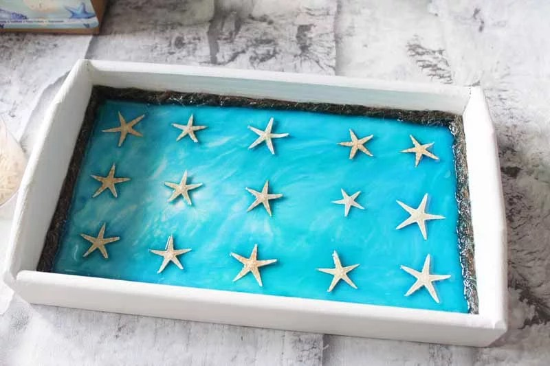starfish on a resin tray
