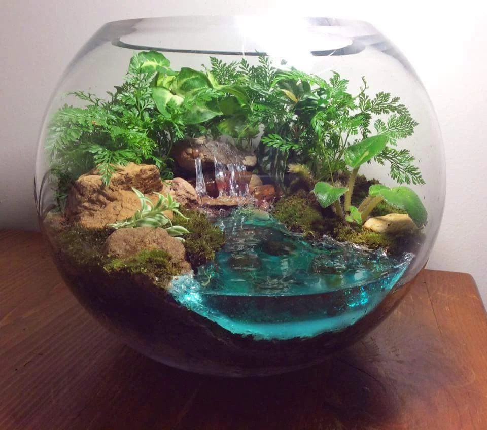 How to make water for a terrarium? - Resin Obsession