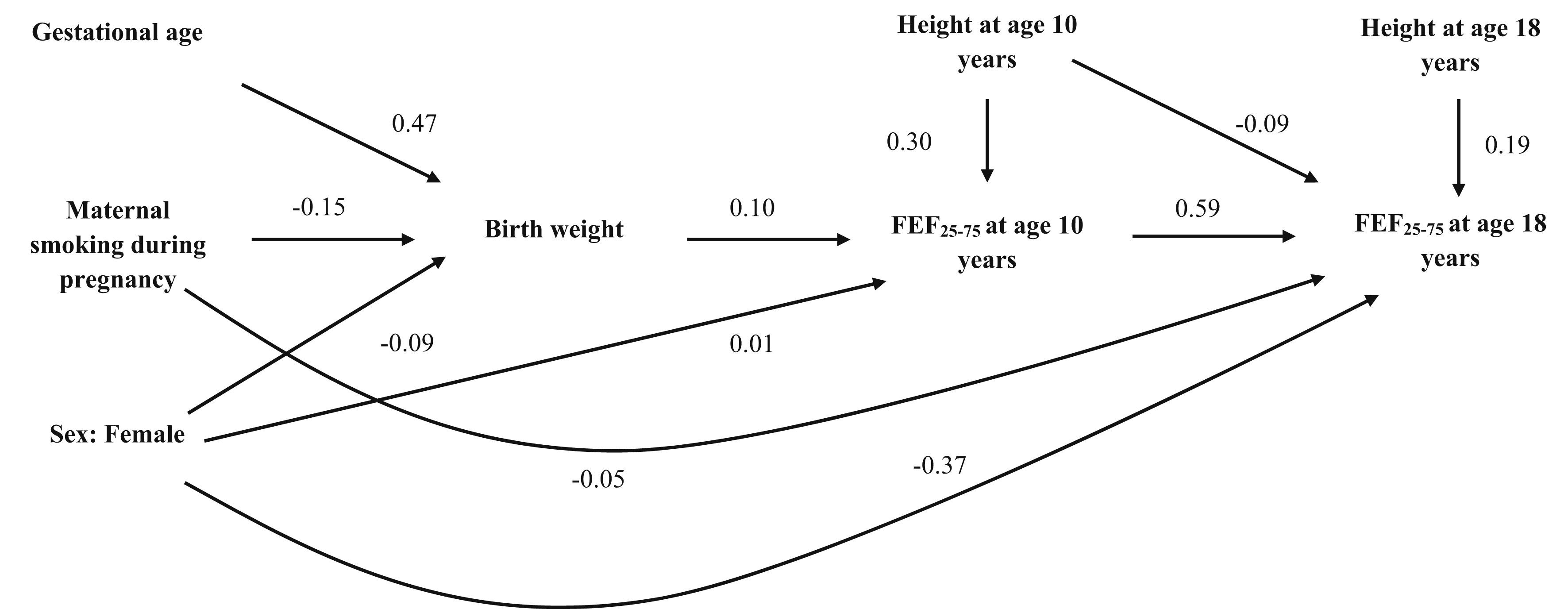 Relationship Between Birth Weight Maternal Smoking During