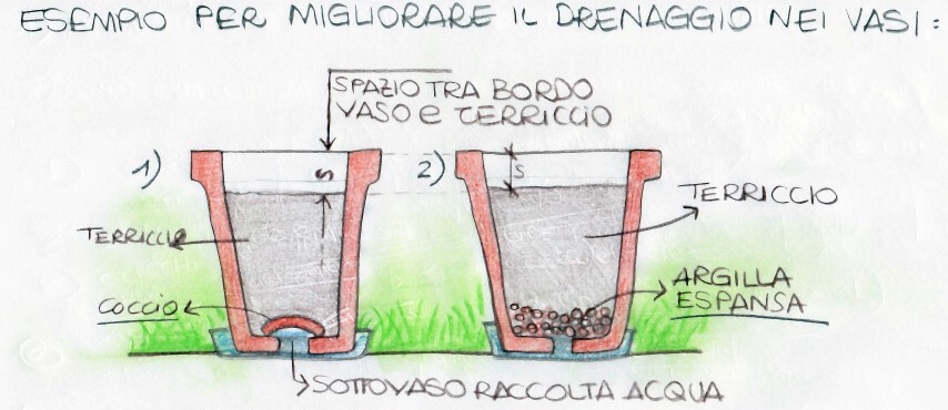 vasi piante drenaggio