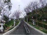 名護城公園の南口付近③