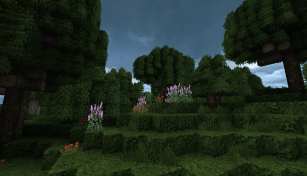 conquest-resource-pack-6