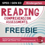 reading-comprehension-test-with-answers