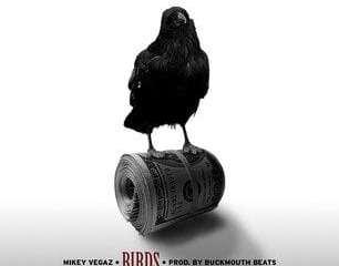 mikey vegaz - birds produced by Buckmouth beatz
