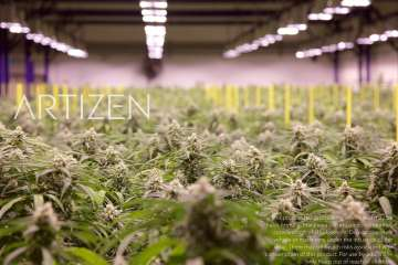 The Art and Zen of Legal Weed   Featuring Artizen Cannabis   Photo: www.artizencannabis.com