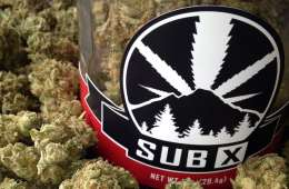 Sub X Has Some Of The Best Cannabis In Washington State