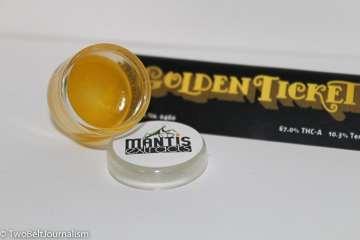 Golden Ticket strain
