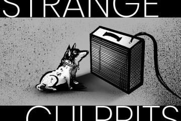 Strange Culprits Just Released Their First Self Titled Garage/Prog Album