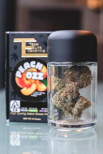 Peach Ozz Cannabis Review (Feat. Team Elite Genetics)