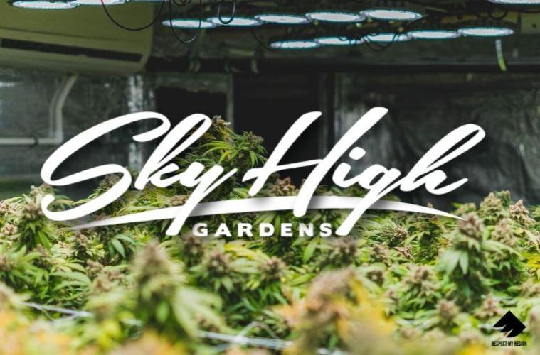 Sky High Gardens Teaches RMR How To Burp Cannabis And Press Rosin