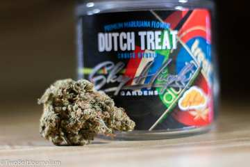 What Makes Sky High Gardens Dutch Treat Strain So Dank?