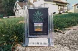 Orange Widow Live Resin Strain Review (Feat. DNA Gardens)