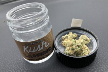 Los Angeles Kush Strain Review (Ft. LA Honor)