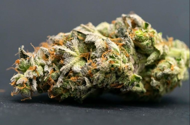 Strain Reviews Archives | Respect My Region