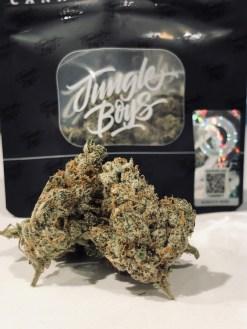 Jungleboys Grape Head #5 Cannabis Strain Review