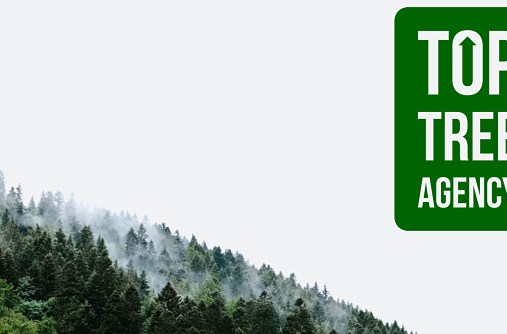 Top Tree Harnesses Social Media To Generate Sustainable Growth For Any Business—An Interview With Co-Founder Layne Schmerin