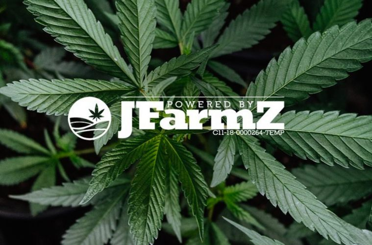 JFarmz Provides Chef Curated Cannabis For The Hungry Cannasseurs Of LA—Interview With Founder Jason Harley