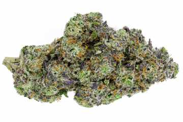 The Pink Runtz Strain Is A Mysteriously Sweet And Floral Designer Strain