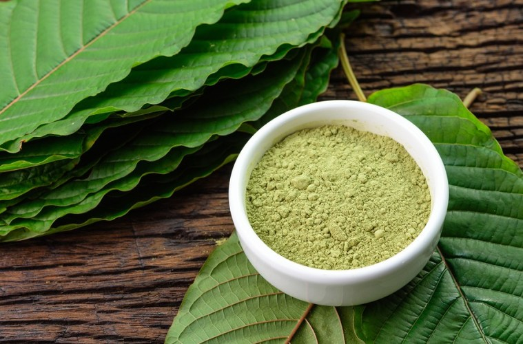 White Malay Kratom Is A Popular Alternative Medicine That Has A Wide Variety Of Uses