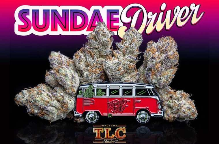 The Fruity And Creamy Sundae Driver Strain May Inject Mellow Vibes Into Any Day