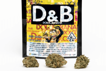this is a photo of the dolce & banana strain from golden state banana where the nugs are in front of the black and gold bag