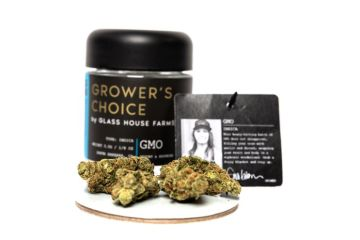 gmo Strain Review Featuring The Grower's Choice Line From Glass House Farms In California