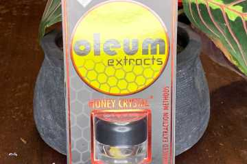 The Space Dust #3 Strain Review Featuring Olem Extract's Honey Crystal Dabs In Washington State
