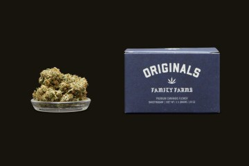 Oakstradam OG: A Super Sweet And Piney Indica That Is Great For Pain