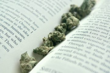 Brooklyn's Medgar Evers College To Offer Cannabis Minor Degree Supported by Berner's Cookies, Chris Webber's Fund, Columbia Care, More