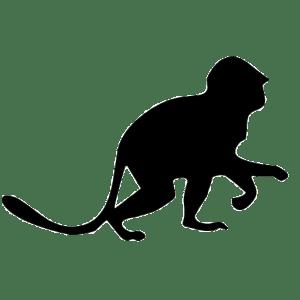 Respect The Monkeys logo