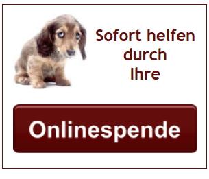Onlinespende