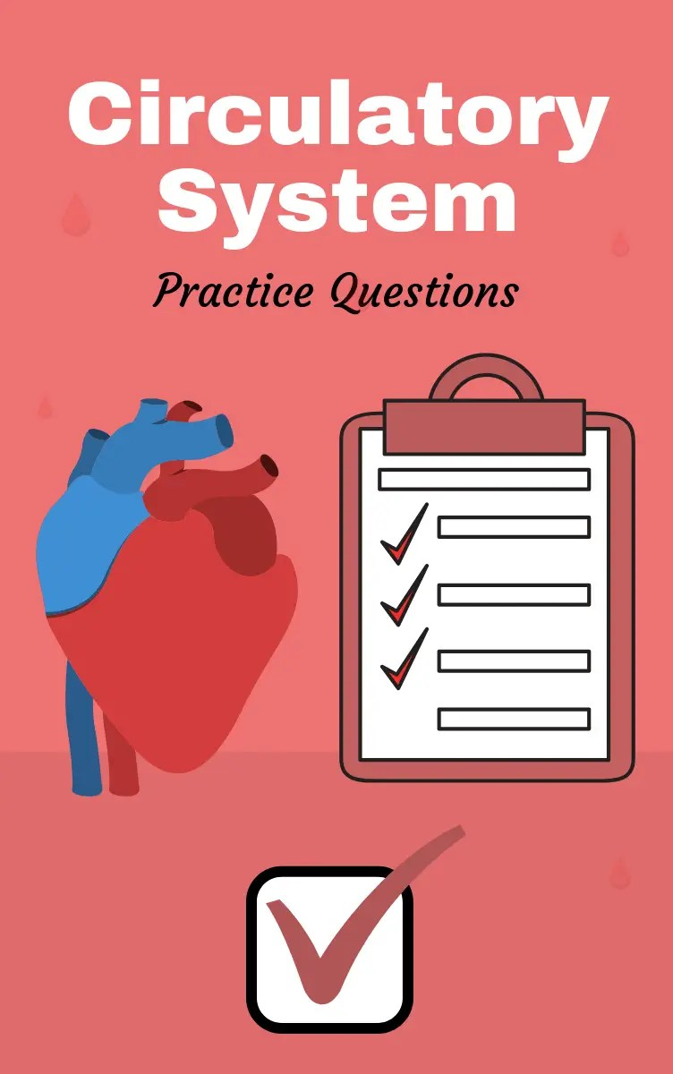 Anatomy and Physiology of the Circulatory System (Practice Questions)