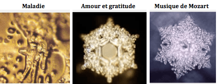https://i0.wp.com/www.ressenti-sonore-et-vibratoire.com/attachments/Image/emoto.png