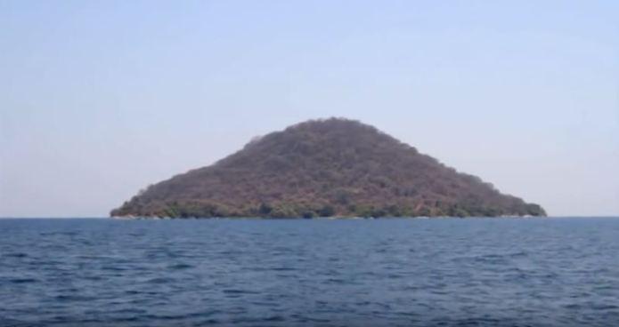 Vegetation in middle of lake Malawi