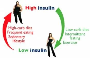 Reboot Your Diet by Eating Low Carbohydrate and High Fat