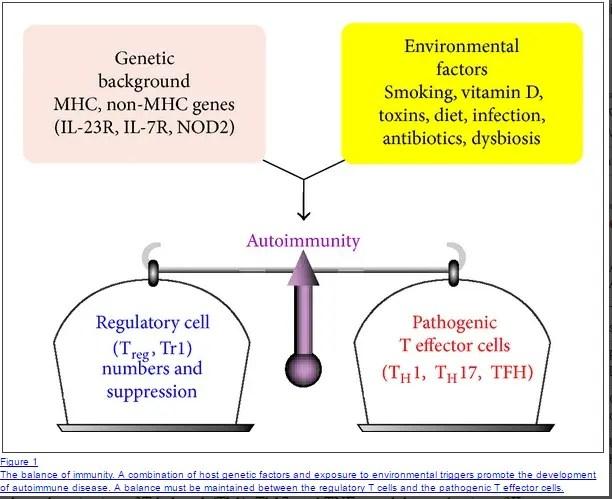 environmental factors and autoimmune thyroiditis