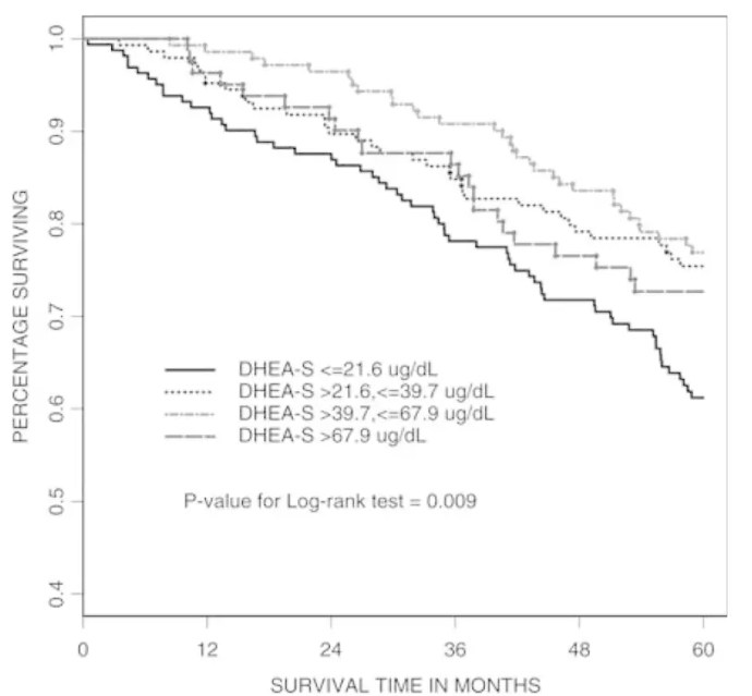 Mortality in women with high and low DHEA
