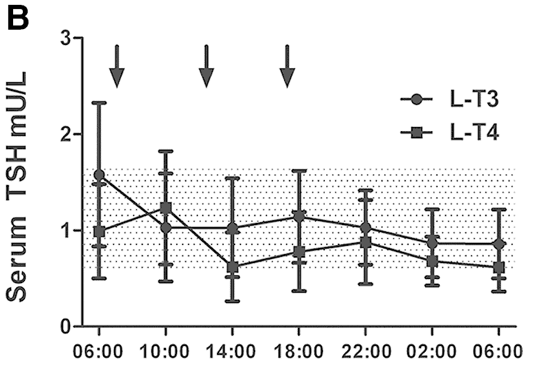 Liothyronine therapy is comparable to levothyroxine in lowering the TSH
